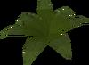Small fern built