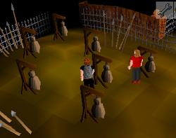 Combat Training Camp Dummies
