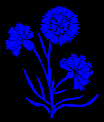 File:Cornflower.png