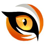 N-Emblem v2