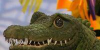 Sly the Crocodile
