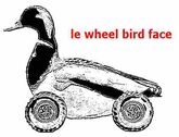 Le wheel bird face