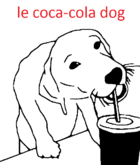 Le coca-cola dog