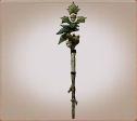 Staff oak