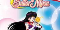 Sailor Moon: Una romantica crociera
