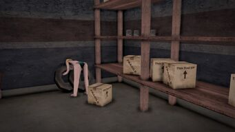 Donnie's - Interior in Saints Row 2 - storeroom shelves