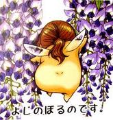 Minekura Kazuya gall02