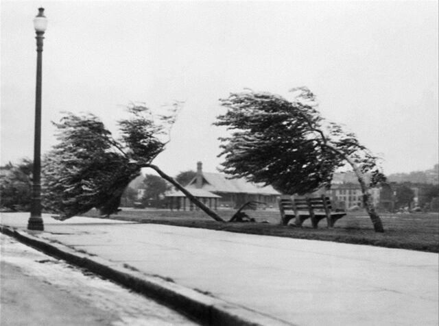 File:1938.jpg