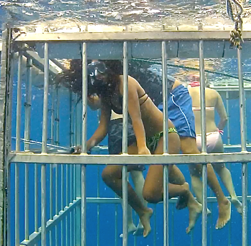 File:Waterborne Cage.png