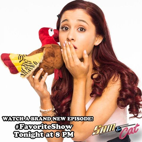 File:Cat holding a chicken - promo pic for FavoriteShow.jpg