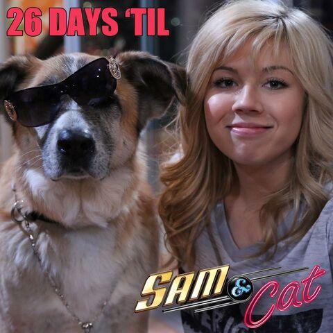 File:Sam and a dog, 26 days until premiere.jpg