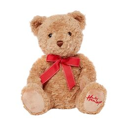 Hamleys-jolly-teddy-bear-78051-0-1417083604000