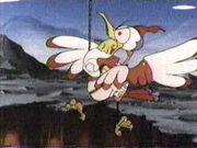 Speedy Cuckoo-bird 7