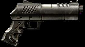 RIA 313