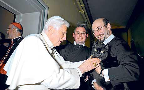 File:Pope blessing cat.jpg