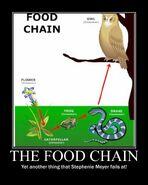 Motiv - smeyer food chain fail