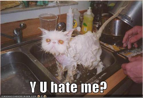 File:Why you hate me.jpg