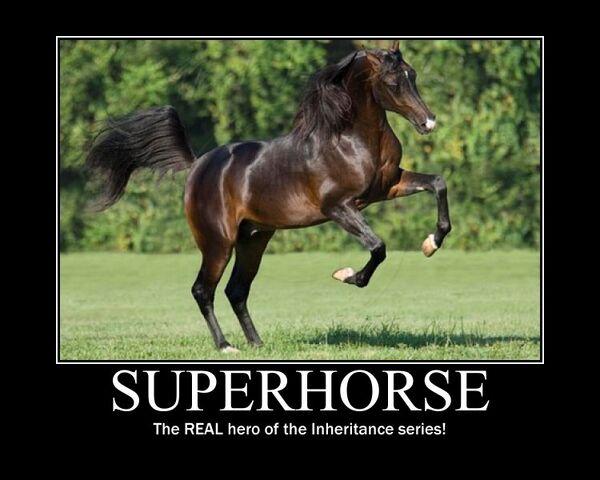 File:Motiv - superhorse.jpg