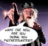 Dumbledore - motherfuckers