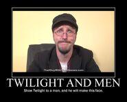 Motiv - twilight and men 2