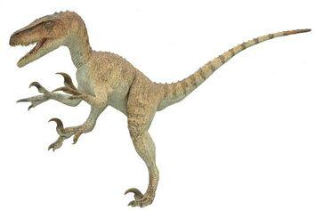 Utahraptor020