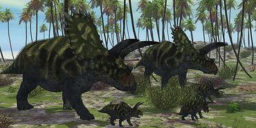 Coahuilaceratops-dinosaur