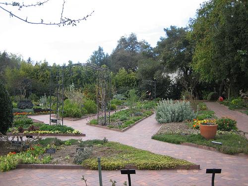 File:Kitchen Garden.jpg