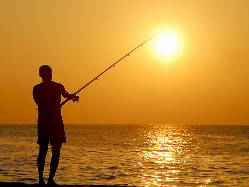 File:Sun - catcher.jpg
