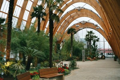 File:Sheffield Winter Garden1.jpg