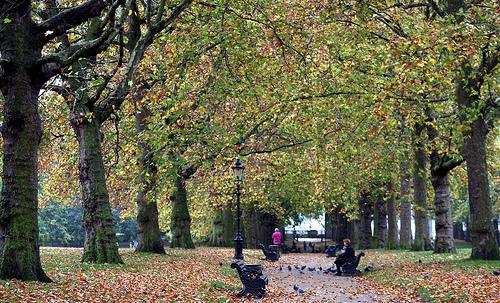 File:London in the Fall....jpg
