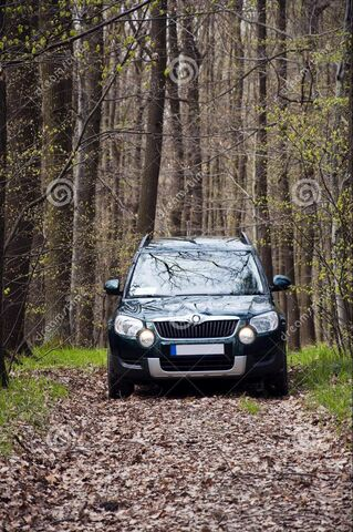Datei:Auto auf Waldweg.jpg