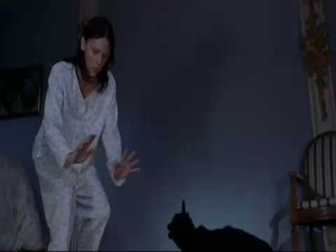 File:Scary Movie 2 Cindy Trying to Calm Mr. Kittles.jpg