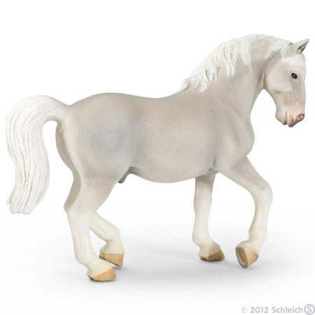 File:Lipizzaner Stallion.jpg