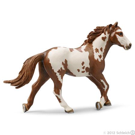 File:Pinto Stallion.jpg