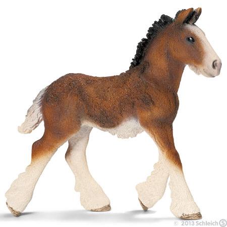 File:Shire Foal.jpg