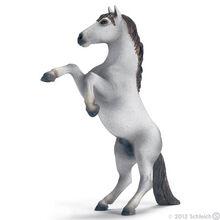 Mustang Stallion White
