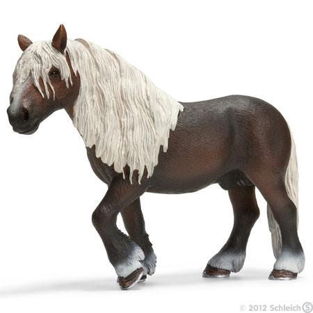 File:Black Forest Stallion.jpg