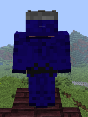 Wizard armor back