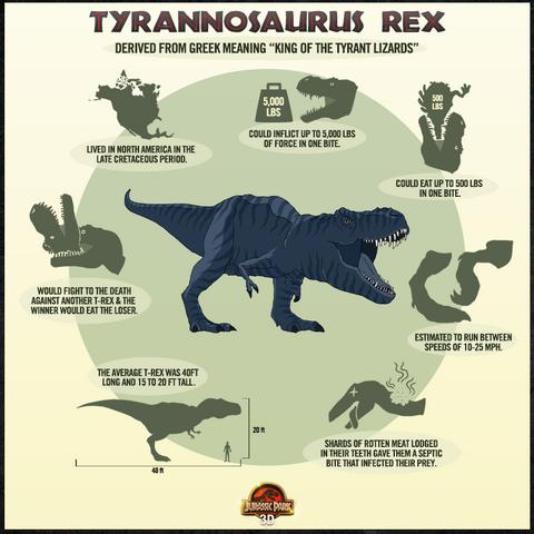 File:Tyrannosaurus Rex Data Chart.png
