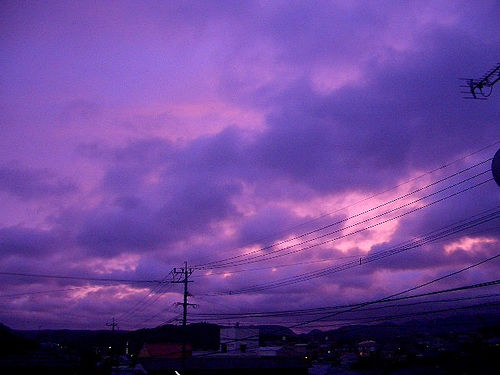 File:Typhoon / 台風上陸中.jpg