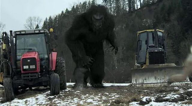 File:Bigfoot8.jpg