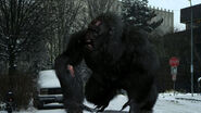 Bigfoot5