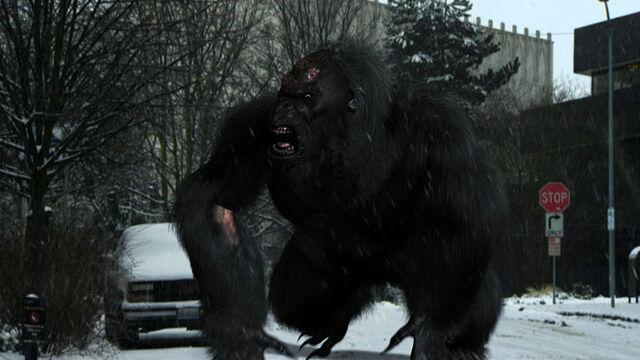 File:Bigfoot5.jpg
