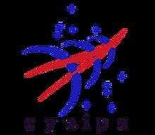 Suzirya logo