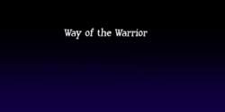 Way of the Warrior
