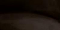 Officer McBride