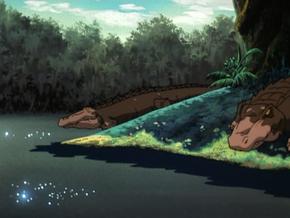 Present-day alligators (Zombie Island)