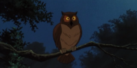 Owl (Scooby-Doo on Zombie Island)