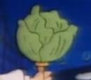 Lettuce on a Stick
