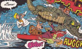 Poormanland gator attacks